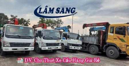 Cho thuê xe cẩu hàng tại Quận Tân Phú